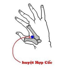 Tuyet-chieu-bam-huyet-chua-me-day-cap-toc-3