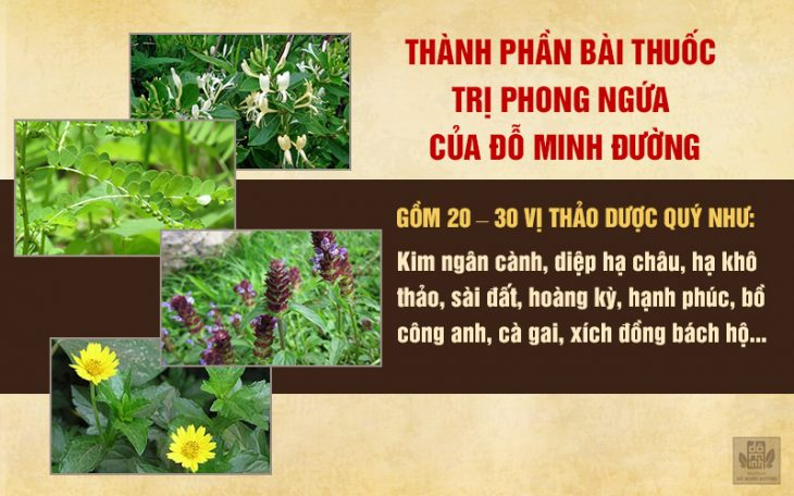 Thảo dược tự nhiên chữa phong ngứa trong bài thuốc Đỗ Minh Đường
